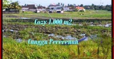 Beautiful 1,000 m2 LAND IN CANGGU FOR SALE TJCG177