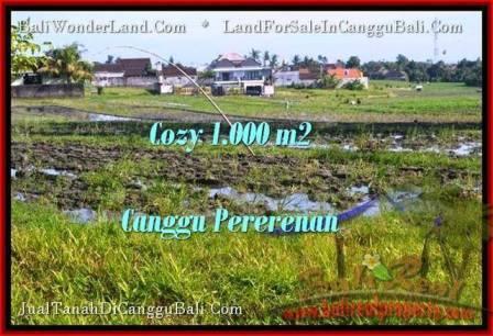 1,000 m2 LAND SALE IN Canggu Kayutulang  BALI TJCG177