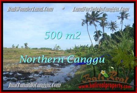 Beautiful PROPERTY 500 m2 LAND FOR SALE IN CANGGU BALI TJCG181