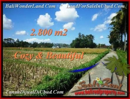 Exotic LAND SALE IN Ubud Pejeng BALI TJUB498