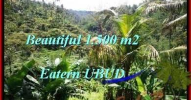 Magnificent PROPERTY UBUD LAND FOR SALE TJUB503