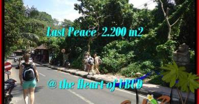 FOR SALE 2,200 m2 LAND IN UBUD TJUB509