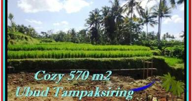 Exotic 570 m2 LAND IN UBUD BALI FOR SALE TJUB511