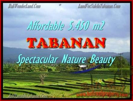FOR SALE Magnificent LAND IN Tabanan Selemadeg BALI TJTB152