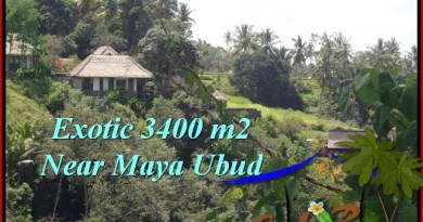 FOR SALE Affordable PROPERTY 3,400 m2 LAND IN UBUD BALI TJUB514
