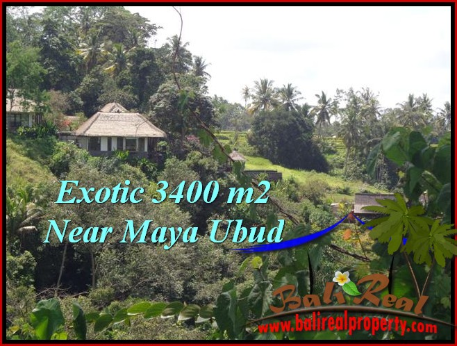Magnificent UBUD BALI 3,400 m2 LAND FOR SALE TJUB514