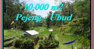 Beautiful LAND FOR SALE IN UBUD TJUB519