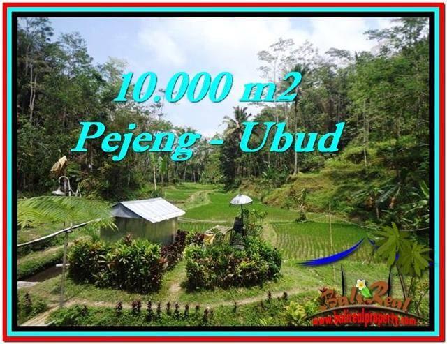 Ubud Tampak Siring BALI LAND FOR SALE TJUB519