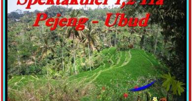 Affordable PROPERTY LAND IN UBUD FOR SALE TJUB520