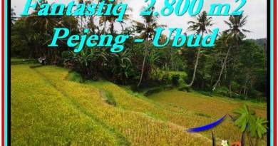 Magnificent PROPERTY LAND SALE IN UBUD TJUB521