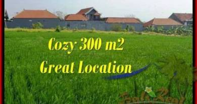 Magnificent LAND SALE IN Canggu Brawa TJCG186