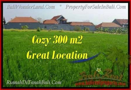 LAND FOR SALE IN Canggu Brawa TJCG186