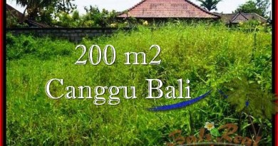 FOR SALE 200 m2 LAND IN Canggu Pererenan BALI TJCG190