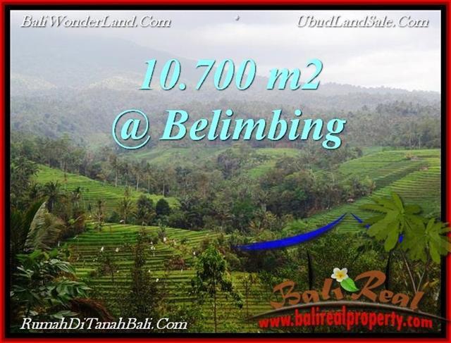 Exotic PROPERTY 10,700 m2 LAND FOR SALE IN Tabanan Selemadeg TJTB219
