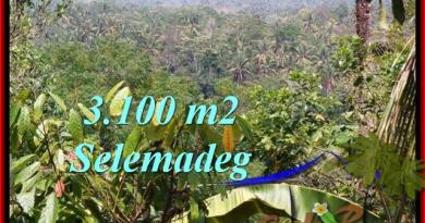 FOR SALE Exotic LAND IN Tabanan Selemadeg BALI TJTB222