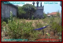 Beautiful 200 m2 LAND SALE IN JIMBARAN TJJI102