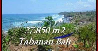 Magnificent PROPERTY 27,850 m2 LAND IN Tabanan Selemadeg FOR SALE TJTB229