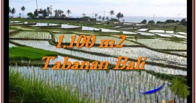 Exotic PROPERTY 1,100 m2 LAND FOR SALE IN Tabanan Selemadeg TJTB248