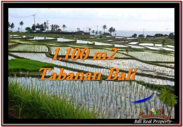 Exotic PROPERTY 1,100 m2 LAND FOR SALE IN Tabanan Selemadeg TJTB248