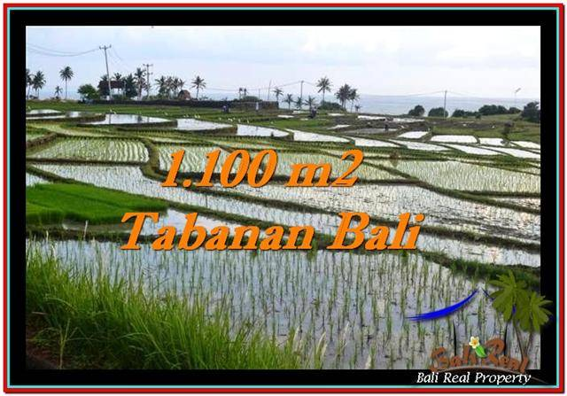 Magnificent TABANAN BALI 1,100 m2 LAND FOR SALE TJTB248