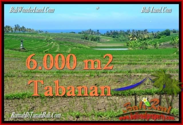 Magnificent TABANAN BALI 6,000 m2 LAND FOR SALE TJTB268