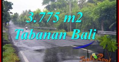 Affordable PROPERTY LAND FOR SALE IN TABANAN TJTB271