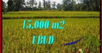 FOR SALE Magnificent 15,000 m2 LAND IN UBUD BALI TJUB551