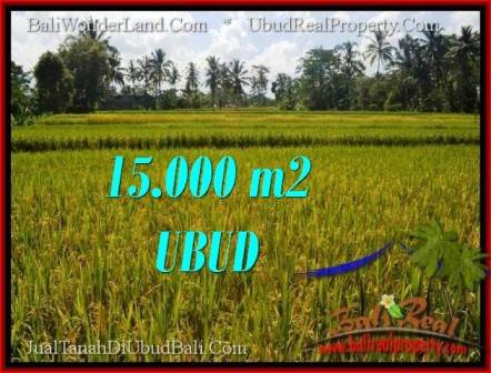 Affordable UBUD BALI 15,000 m2 LAND FOR SALE TJUB551