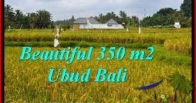 LAND SALE IN Sentral Ubud BALI TJUB540
