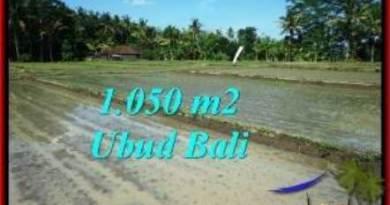 Sentral Ubud BALI LAND FOR SALE TJUB544