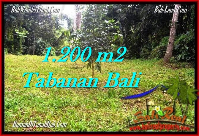 Magnificent LAND SALE IN Tabanan Penebel BALI TJTB278