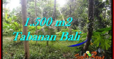 FOR SALE Affordable PROPERTY 1,500 m2 LAND IN TABANAN BALI TJTB279