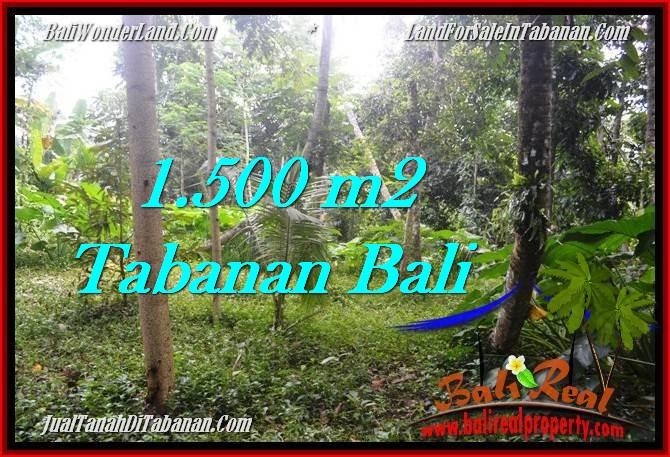 Exotic 1,500 m2 LAND IN TABANAN BALI FOR SALE TJTB279