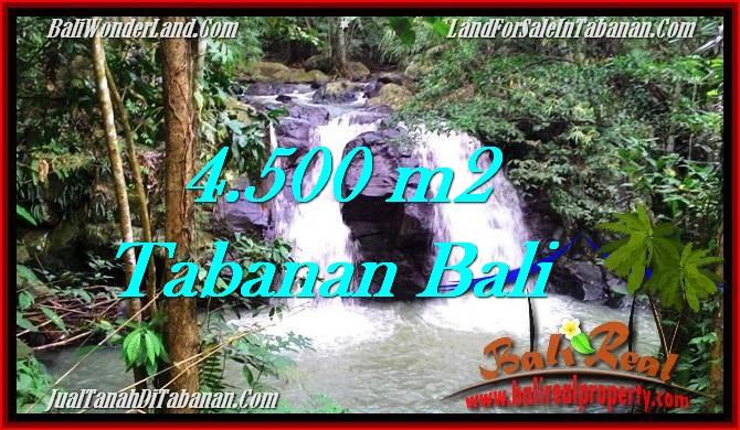 Affordable 4,500 m2 LAND IN TABANAN BALI FOR SALE TJTB283