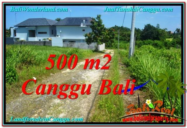 Affordable LAND SALE IN Canggu Brawa TJCG201