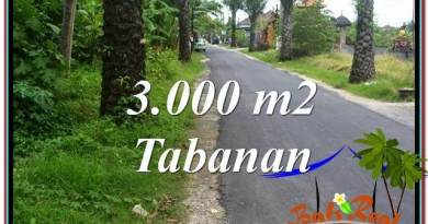 FOR SALE Magnificent LAND IN Tabanan Kerambitan BALI TJTB297