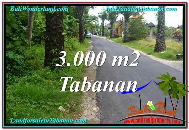 Beautiful PROPERTY 3,000 m2 LAND IN Tabanan Kerambitan FOR SALE TJTB297