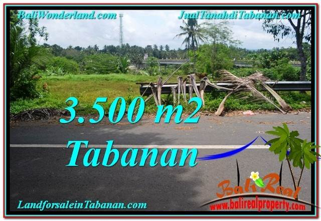 Exotic 3,500 m2 LAND FOR SALE IN TABANAN BALI TJTB298