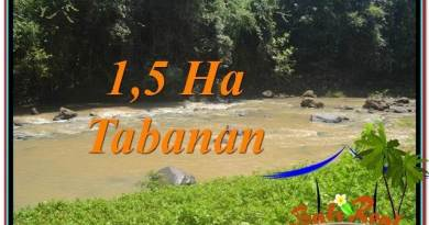 Beautiful PROPERTY 15,000 m2 LAND IN Tabanan Selemadeg FOR SALE TJTB304