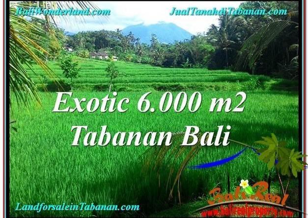 LAND IN Tabanan Penebel BALI FOR SALE TJTB306