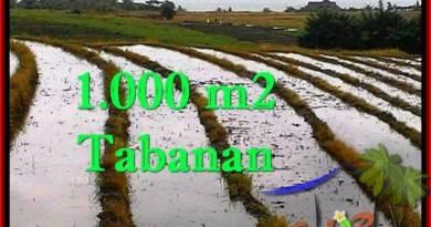 Exotic LAND SALE IN Tabanan Selemadeg BALI TJTB261