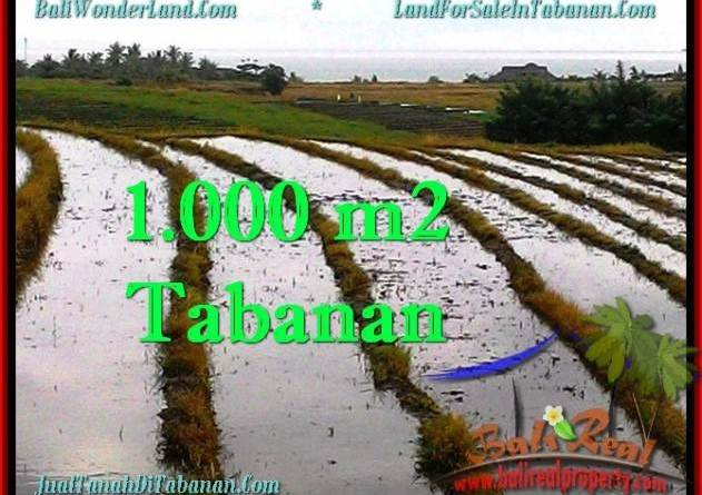 Exotic LAND SALE IN Tabanan Selemadeg BALI TJTB261