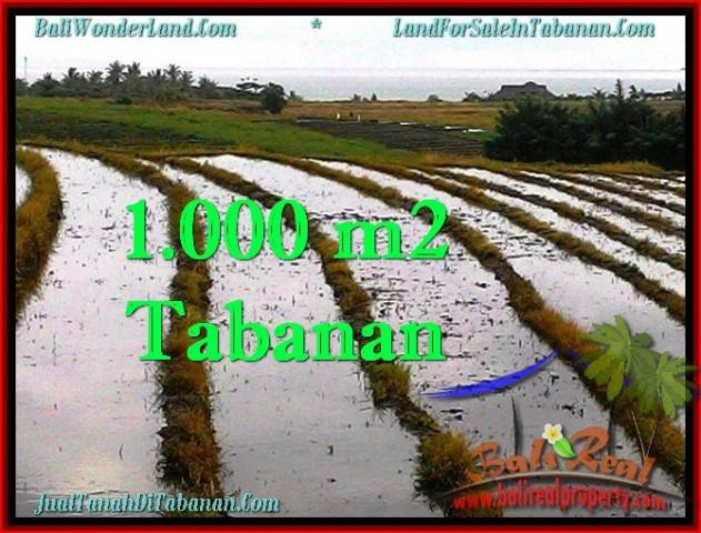 Beautiful PROPERTY 1,000 m2 LAND IN Tabanan Selemadeg FOR SALE TJTB261