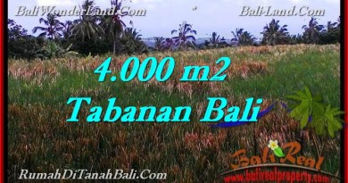 Exotic 4,000 m2 LAND FOR SALE IN TABANAN BALI TJTB288