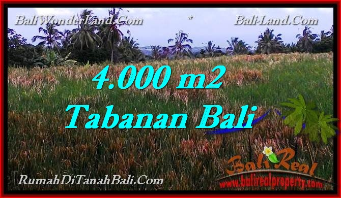 Beautiful PROPERTY TABANAN LAND FOR SALE TJTB288