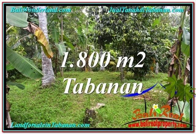 Beautiful TABANAN BALI 1,800 m2 LAND FOR SALE TJTB293