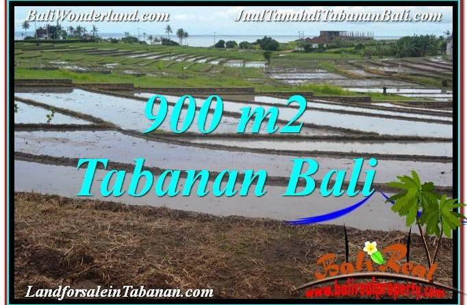 FOR SALE Affordable PROPERTY LAND IN TABANAN TJTB308
