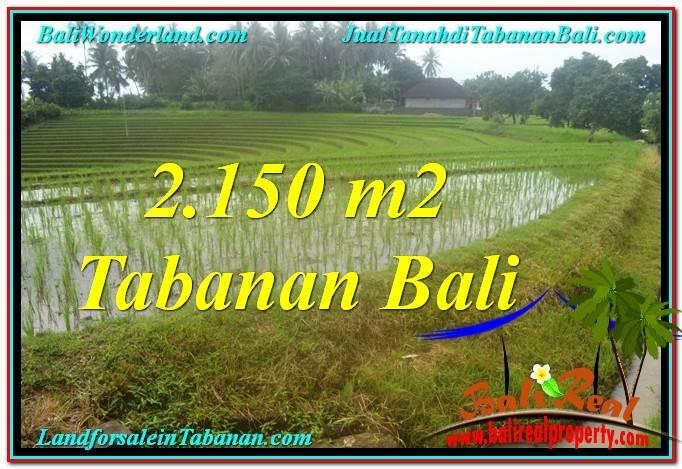 Affordable PROPERTY 2,150 m2 LAND FOR SALE IN TABANAN TJTB312