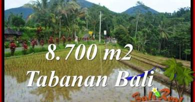 Affordable LAND SALE IN Tabanan Penebel BALI TJTB316