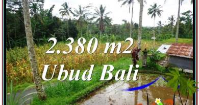 Magnificent LAND FOR SALE IN UBUD TJUB567